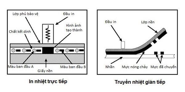 Sự khác nhau cơ bản về công nghệ in ấn giữa máy in truyền nhiệt và in trực tiếp