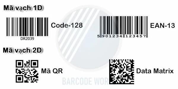 Điểm khác nhau giữa mã vạch 1D và 2D